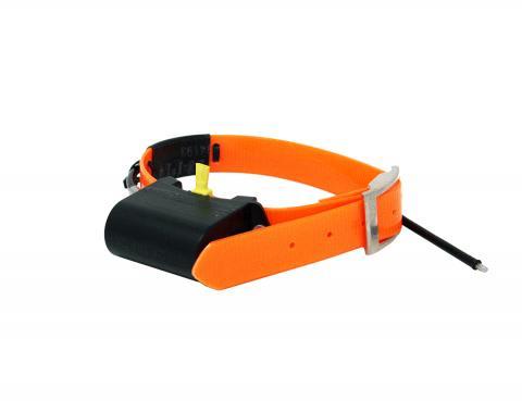 Quick Track QTC XL Radio Tracking dog Collar